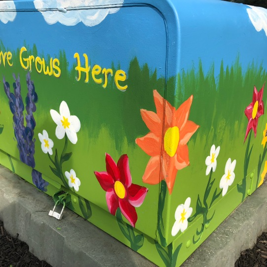 Twinsburg Electrical Box Painting 4' x 4' x 4' 2018